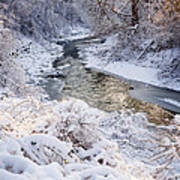 Forest Creek After Winter Storm Art Print