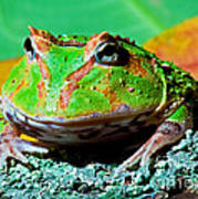 Green Fantasy Frogpacman Frog Art Print