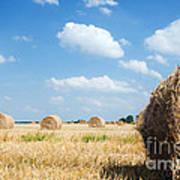 Haystacks In The Field Art Print