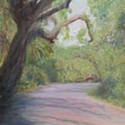 Kingsley Plantation Road Art Print