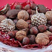 Mixed Holiday Nuts Art Print