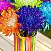 Multicolored Chrysanthemums  Art Print