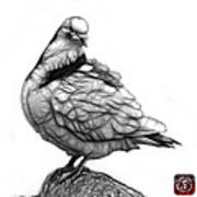 Pink Pigeon Pop Art 5516 - Fs - Bb -  Modern Animal Artist James Art Print