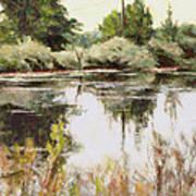 Placid Waters Art Print