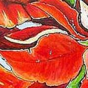 Poinsettias Art Print