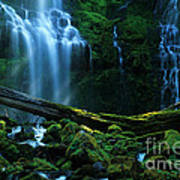 Proxy Falls Oregon Art Print