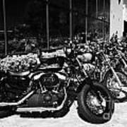 Row Of Harley Davidson Motorbikes Including Sportster Outside Motorcycle Dealership Orlando Florida  Art Print