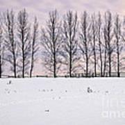 Rural Winter Landscape Art Print