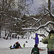 Snowboarding  In Central Park  2011 Art Print