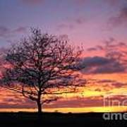 Spectacular Sunset Epsom Downs Surrey Uk Art Print