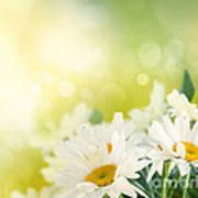 Spring Background Art Print