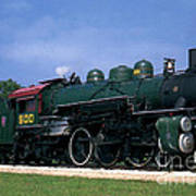 Texas State Railroad Art Print