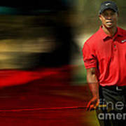 Tiger Woods Art Print by Marvin Blaine