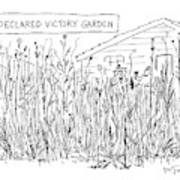 Declared Victory Garden Art Print
