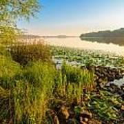 View Of The Dniper River At Morning Art Print
