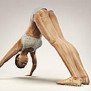 Yoga Downward Facing Dog Pose Art Print