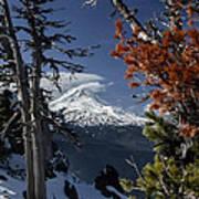 Mt Hood From Lookout Mtn Art Print