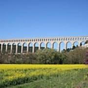 Aqueduct Roquefavour Art Print