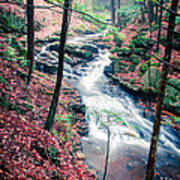 Chesterfield Gorge New Hampshire Art Print by Edward Fielding