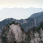 Chinese White Pine On Mt. Huangshan Art Print