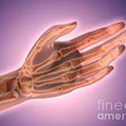 Conceptual Image Of Bones In Human Hand Art Print