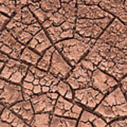 Cracked Dry Clay Art Print