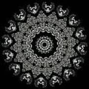 Kaleidoscope Ernst Haeckl Sea Life Series Black And White Set 2  Art Print