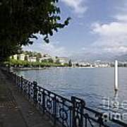 Lake Front With Trees Art Print
