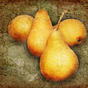 4 Little Pears Are We Art Print