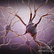 Neuron Art Print