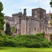 Powderham Castle Art Print