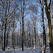 Snowy Landscape Art Print