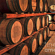 Wine Barrels Art Print by Elena Elisseeva