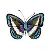 40 Danis Danis Butterfly Art Print