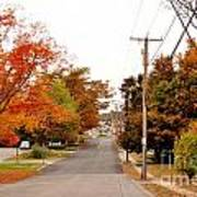 Fall Foliage In New England Art Print