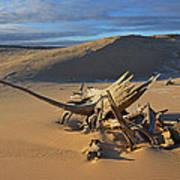 Silver Lake Sand Dunes Art Print