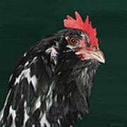 47. Bearded Hen Art Print