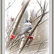 4817-003 - Fb Art Print