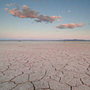Alvord Desert, Oregon Art Print