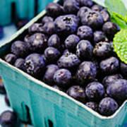 Fresh Picked Organic Blueberries Art Print
