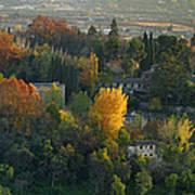 The Alhambra Palace Art Print