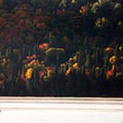 Lake In Autumn Art Print