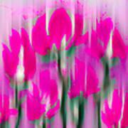 6 1/2 Flowers Art Print
