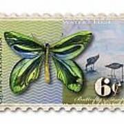 6 Cent Butterfly Stamp Art Print by Amy Kirkpatrick
