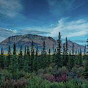 Denali Highway, Route 8, Offers Views Art Print