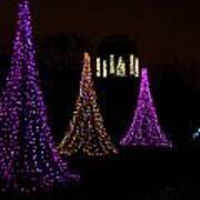Festival Of Lights - Christmas At The Botanical Gardens Art Print