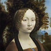 Ginevra De Benci Art Print