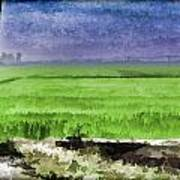 Green Fields With Birds Art Print