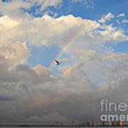 6- Rainbow And Seagull Art Print