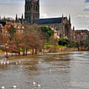 Worcester Cathedral And Swans Art Print
